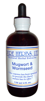 Mugwort [Green Ginger] and Wormseed 4oz